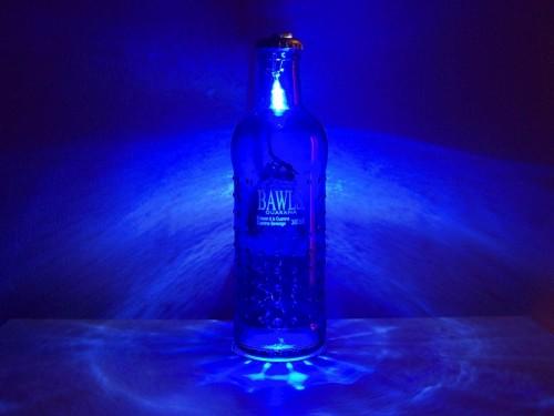 blue_bawls_on.JPG (130 KB)