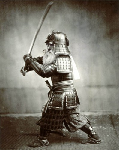samuraidarwin.jpg (87 KB)