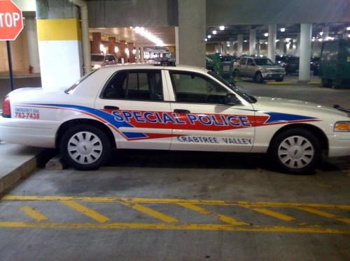 special_police.jpg (157 KB)