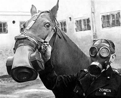 2961203481 8c459f0b97 Horse Gas Masks wtf Gas Masks Cute As Hell Animals